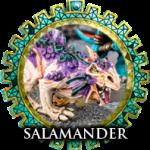 salamander1